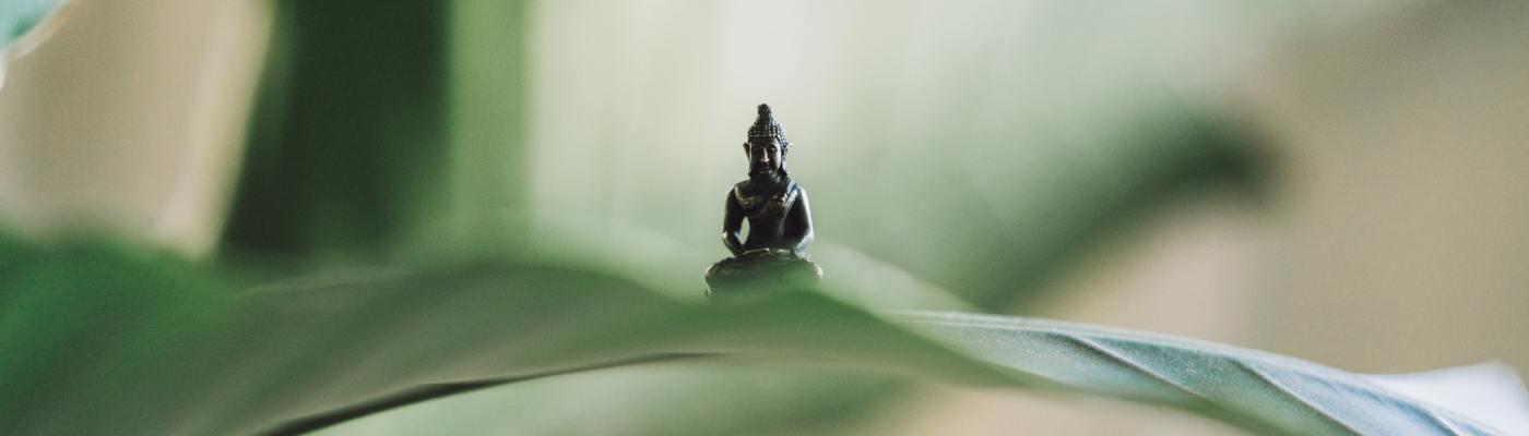 Ose Hatha Yoga Grenoble